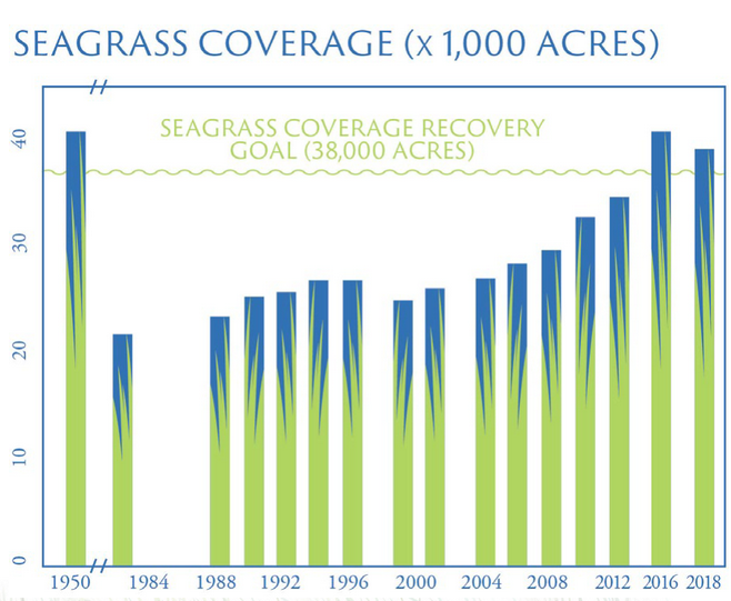 Seagrass Chart